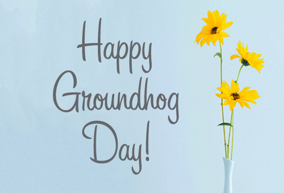 Happy Groundhog Day 2019