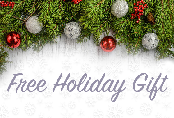Free Holiday Gift 2019